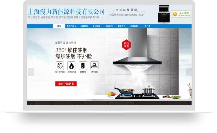 上海漫力新能源科技有限公司(豪华版服务包)