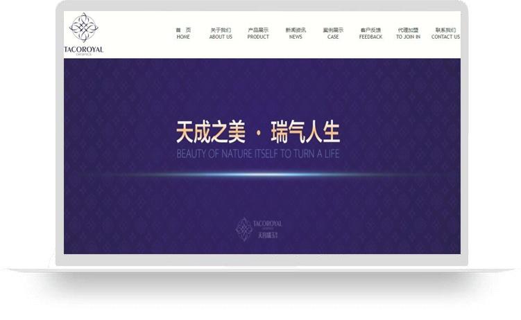 天宫瑞玉陶瓷有限公司(定制网站A)