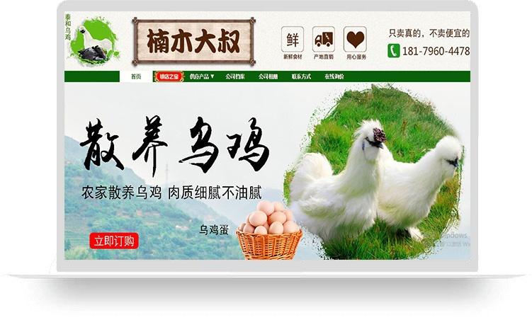 江西楠木大叔电子商务有限公司(标准版服务包)